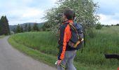 Randonnée Marche Wellin - Balade au Pays de Wellin - De Halma à Wellin - Photo 6