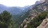 Trail Walk QUENZA - cascade purcaraccia - Photo 2