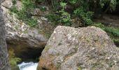 Randonnée Marche SAINT-MAURICE-NAVACELLES - Cirque de Navacelles  - Photo 8