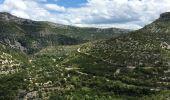 Randonnée Marche SAINT-MAURICE-NAVACELLES - Cirque de Navacelles  - Photo 3