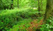 Randonnée Marche PIERREFONDS - en forêt de Compiègne_1_étang de St-Périne_la Michelette - Photo 55