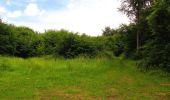 Randonnée Marche PIERREFONDS - en forêt de Compiègne_1_étang de St-Périne_la Michelette - Photo 100