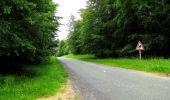 Randonnée Marche PIERREFONDS - en forêt de Compiègne_1_étang de St-Périne_la Michelette - Photo 76