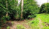 Randonnée Marche PIERREFONDS - en forêt de Compiègne_1_étang de St-Périne_la Michelette - Photo 103