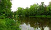 Randonnée Marche PIERREFONDS - en forêt de Compiègne_1_étang de St-Périne_la Michelette - Photo 12