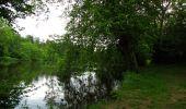 Randonnée Marche PIERREFONDS - en forêt de Compiègne_1_étang de St-Périne_la Michelette - Photo 9