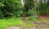 Randonnée Marche PIERREFONDS - en forêt de Compiègne_1_étang de St-Périne_la Michelette - Photo 96