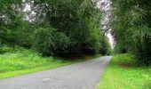 Randonnée Marche PIERREFONDS - en forêt de Compiègne_1_étang de St-Périne_la Michelette - Photo 124
