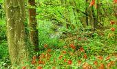 Randonnée Marche PIERREFONDS - en forêt de Compiègne_1_étang de St-Périne_la Michelette - Photo 30