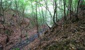 Randonnée Marche PIERREFONDS - en forêt de Compiègne_1_étang de St-Périne_la Michelette - Photo 108