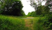 Randonnée Marche PIERREFONDS - en forêt de Compiègne_1_étang de St-Périne_la Michelette - Photo 33