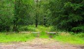 Randonnée Marche PIERREFONDS - en forêt de Compiègne_1_étang de St-Périne_la Michelette - Photo 60