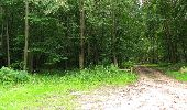 Randonnée Marche PIERREFONDS - en forêt de Compiègne_1_étang de St-Périne_la Michelette - Photo 78