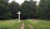 Randonnée Marche PIERREFONDS - en forêt de Compiègne_1_étang de St-Périne_la Michelette - Photo 19