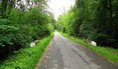 Randonnée Marche PIERREFONDS - en forêt de Compiègne_1_étang de St-Périne_la Michelette - Photo 63