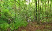 Randonnée Marche PIERREFONDS - en forêt de Compiègne_1_étang de St-Périne_la Michelette - Photo 31
