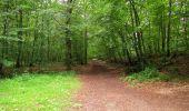Randonnée Marche PIERREFONDS - en forêt de Compiègne_1_étang de St-Périne_la Michelette - Photo 132