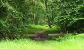 Randonnée Marche PIERREFONDS - en forêt de Compiègne_1_étang de St-Périne_la Michelette - Photo 77