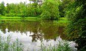 Randonnée Marche PIERREFONDS - en forêt de Compiègne_1_étang de St-Périne_la Michelette - Photo 13
