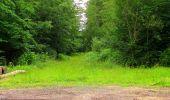 Randonnée Marche PIERREFONDS - en forêt de Compiègne_1_étang de St-Périne_la Michelette - Photo 61