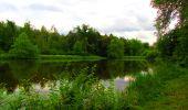 Randonnée Marche PIERREFONDS - en forêt de Compiègne_1_étang de St-Périne_la Michelette - Photo 11