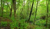 Randonnée Marche PIERREFONDS - en forêt de Compiègne_1_étang de St-Périne_la Michelette - Photo 32