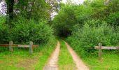 Randonnée Marche PIERREFONDS - en forêt de Compiègne_1_étang de St-Périne_la Michelette - Photo 36