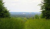 Randonnée Marche PIERREFONDS - en forêt de Compiègne_1_étang de St-Périne_la Michelette - Photo 120