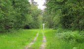 Randonnée Marche PIERREFONDS - en forêt de Compiègne_1_étang de St-Périne_la Michelette - Photo 27