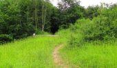 Randonnée Marche PIERREFONDS - en forêt de Compiègne_1_étang de St-Périne_la Michelette - Photo 143