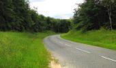 Randonnée Marche PIERREFONDS - en forêt de Compiègne_1_étang de St-Périne_la Michelette - Photo 141
