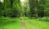 Randonnée Marche PIERREFONDS - en forêt de Compiègne_1_étang de St-Périne_la Michelette - Photo 47