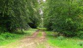Randonnée Marche PIERREFONDS - en forêt de Compiègne_1_étang de St-Périne_la Michelette - Photo 101
