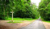 Randonnée Marche PIERREFONDS - en forêt de Compiègne_1_étang de St-Périne_la Michelette - Photo 69