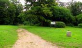 Randonnée Marche PIERREFONDS - en forêt de Compiègne_1_étang de St-Périne_la Michelette - Photo 20