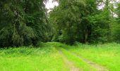 Randonnée Marche PIERREFONDS - en forêt de Compiègne_1_étang de St-Périne_la Michelette - Photo 46