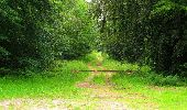 Randonnée Marche PIERREFONDS - en forêt de Compiègne_1_étang de St-Périne_la Michelette - Photo 72