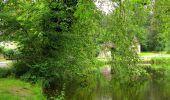 Randonnée Marche PIERREFONDS - en forêt de Compiègne_1_étang de St-Périne_la Michelette - Photo 10