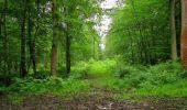 Randonnée Marche PIERREFONDS - en forêt de Compiègne_1_étang de St-Périne_la Michelette - Photo 51