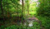 Randonnée Marche PIERREFONDS - en forêt de Compiègne_1_étang de St-Périne_la Michelette - Photo 42