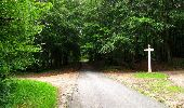 Randonnée Marche PIERREFONDS - en forêt de Compiègne_1_étang de St-Périne_la Michelette - Photo 65