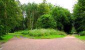 Randonnée Marche PIERREFONDS - en forêt de Compiègne_1_étang de St-Périne_la Michelette - Photo 23