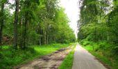 Randonnée Marche PIERREFONDS - en forêt de Compiègne_1_étang de St-Périne_la Michelette - Photo 26