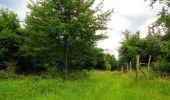 Randonnée Marche PIERREFONDS - en forêt de Compiègne_1_étang de St-Périne_la Michelette - Photo 105