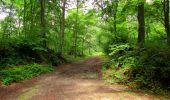 Randonnée Marche PIERREFONDS - en forêt de Compiègne_1_étang de St-Périne_la Michelette - Photo 133