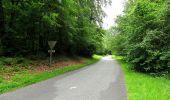 Randonnée Marche PIERREFONDS - en forêt de Compiègne_1_étang de St-Périne_la Michelette - Photo 89