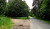 Randonnée Marche PIERREFONDS - en forêt de Compiègne_1_étang de St-Périne_la Michelette - Photo 125