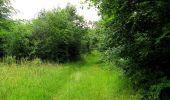 Randonnée Marche PIERREFONDS - en forêt de Compiègne_1_étang de St-Périne_la Michelette - Photo 107