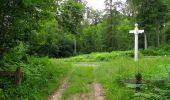 Randonnée Marche PIERREFONDS - en forêt de Compiègne_1_étang de St-Périne_la Michelette - Photo 121
