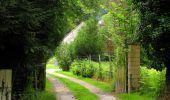 Randonnée Marche PIERREFONDS - en forêt de Compiègne_1_étang de St-Périne_la Michelette - Photo 15
